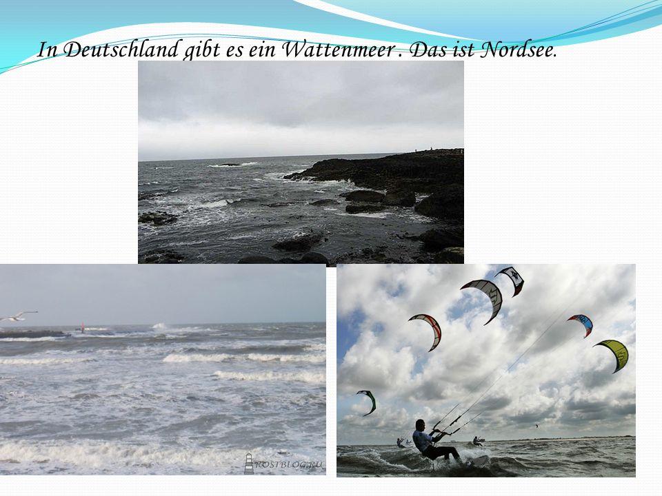 In Deutschland gibt es ein Wattenmeer . Das ist Nordsee.