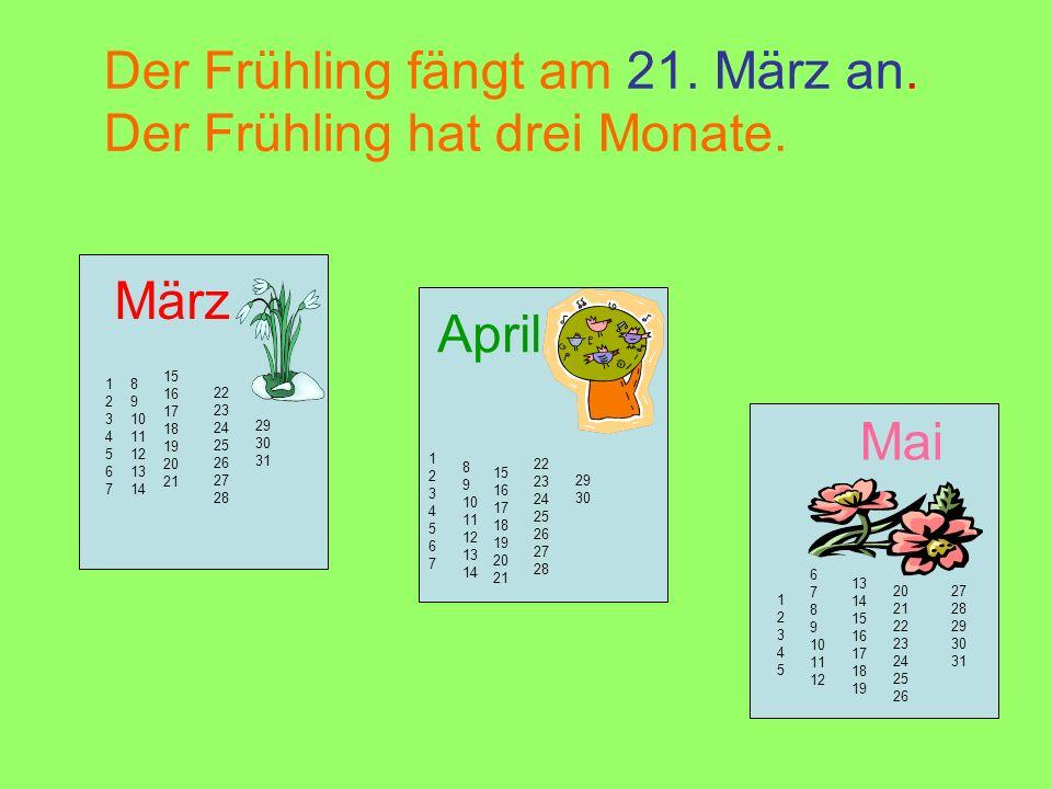 Der Frühling fängt am 21. März an. Der Frühling hat drei Monate.