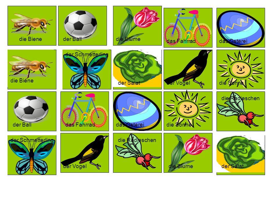 die Biene der Ball. die Blume. das Fahrrad. das Osterei. der Schmetterling. die Biene. der Salat.