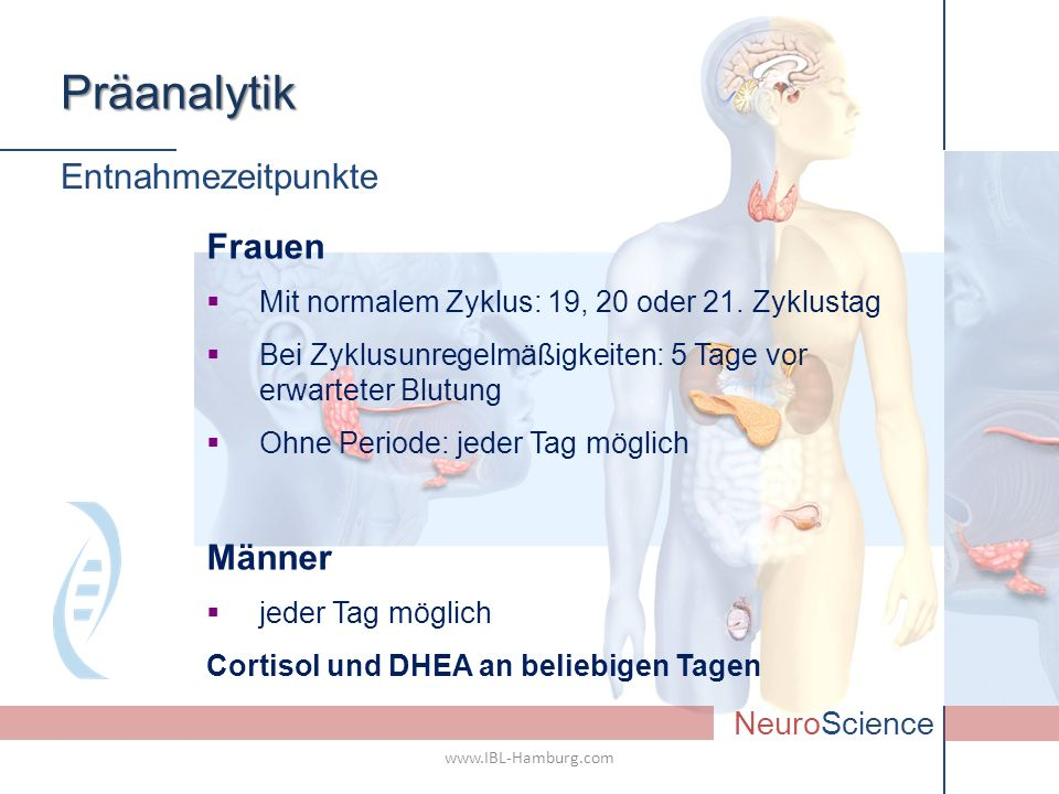 Präanalytik Entnahmezeitpunkte Frauen Männer NeuroScience