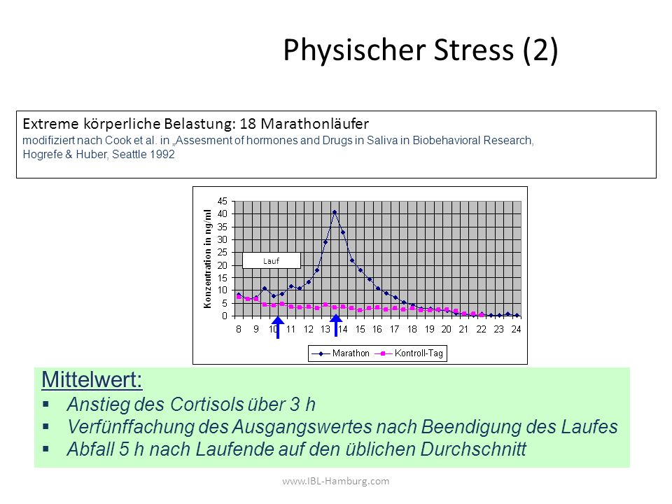 Physischer Stress (2) Mittelwert: Anstieg des Cortisols über 3 h