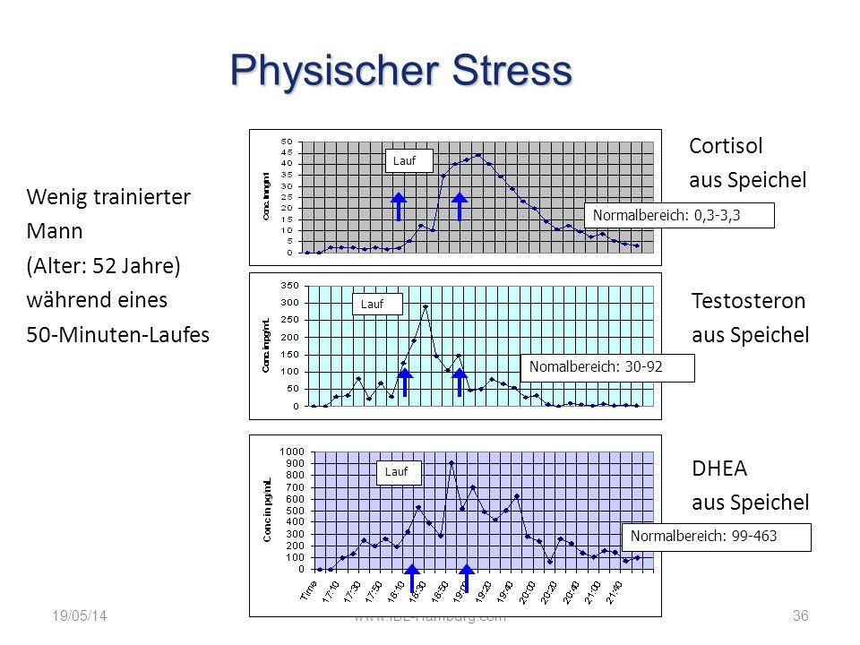 Physischer Stress Cortisol aus Speichel Wenig trainierter Mann
