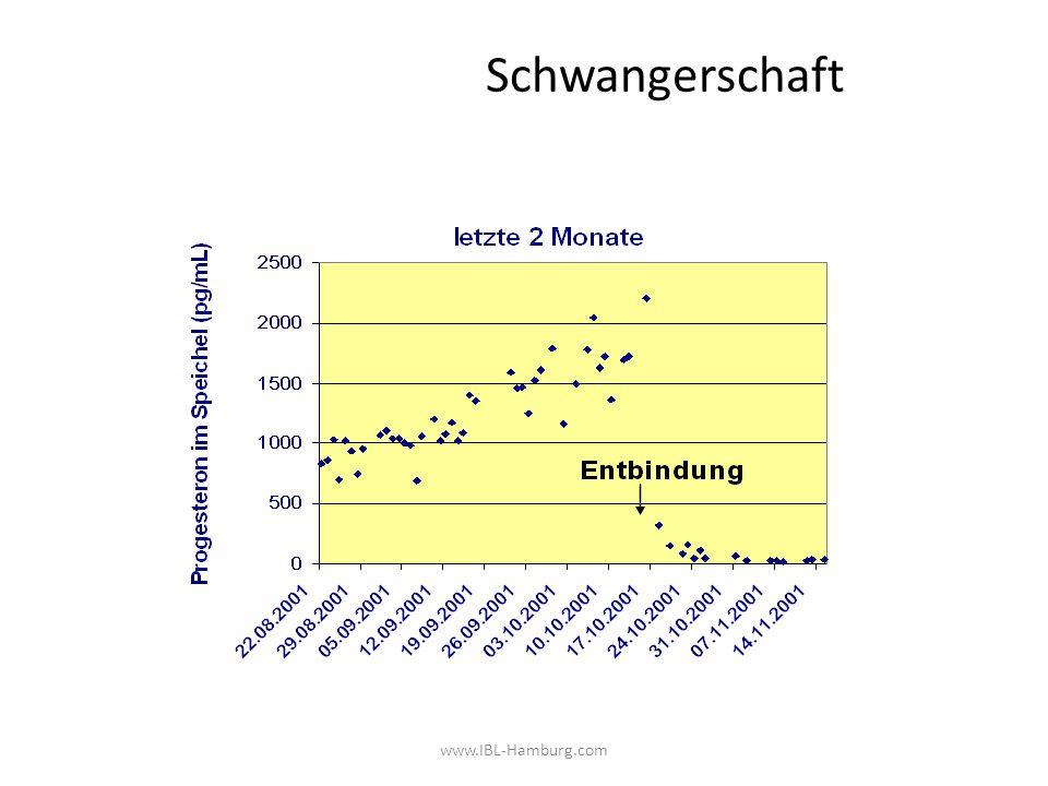 Schwangerschaft www.IBL-Hamburg.com