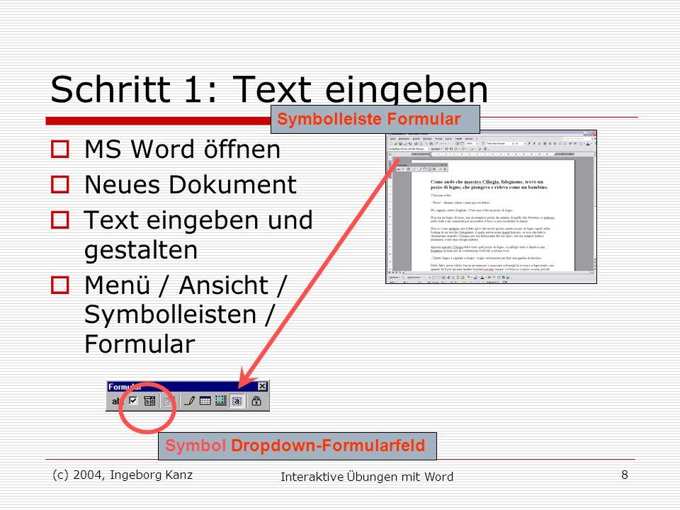 Schritt 1: Text eingeben