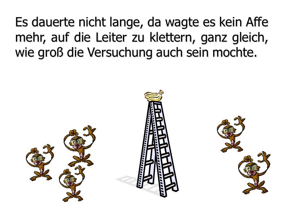 Es dauerte nicht lange, da wagte es kein Affe mehr, auf die Leiter zu klettern, ganz gleich, wie groß die Versuchung auch sein mochte.