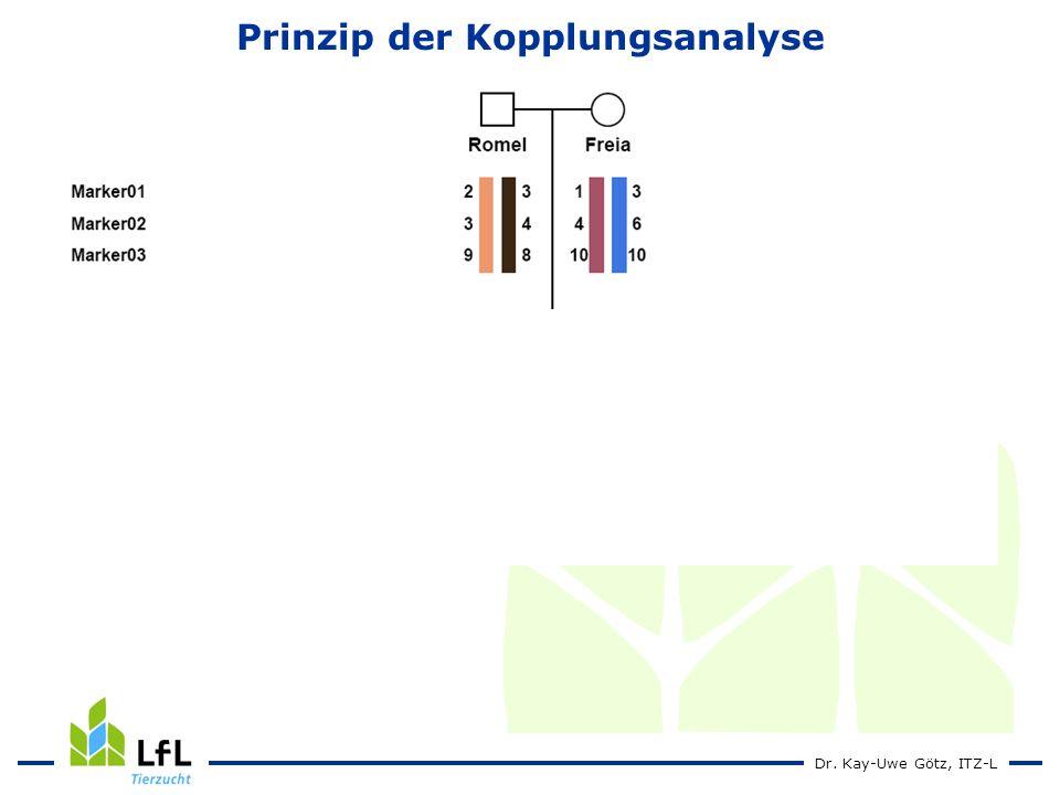 Prinzip der Kopplungsanalyse