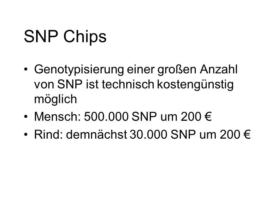 SNP Chips Genotypisierung einer großen Anzahl von SNP ist technisch kostengünstig möglich. Mensch: 500.000 SNP um 200 €