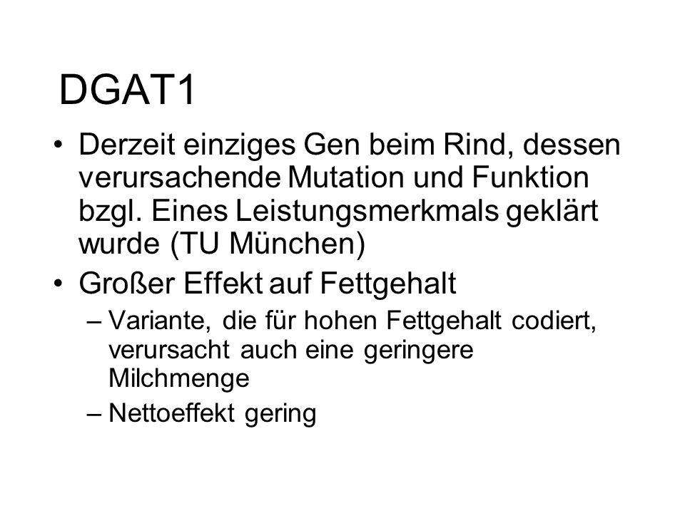 DGAT1 Derzeit einziges Gen beim Rind, dessen verursachende Mutation und Funktion bzgl. Eines Leistungsmerkmals geklärt wurde (TU München)