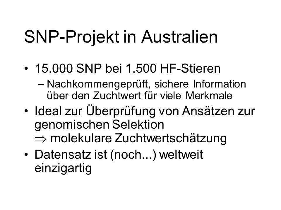 SNP-Projekt in Australien