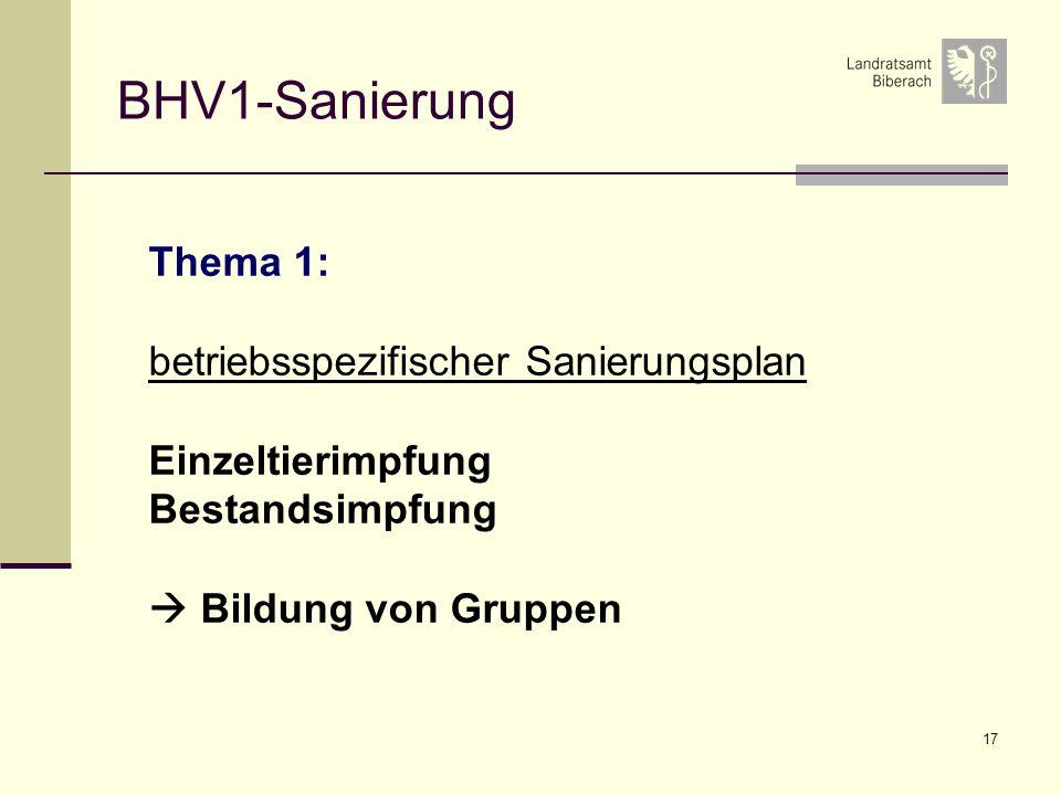 BHV1-Sanierung Thema 1: betriebsspezifischer Sanierungsplan