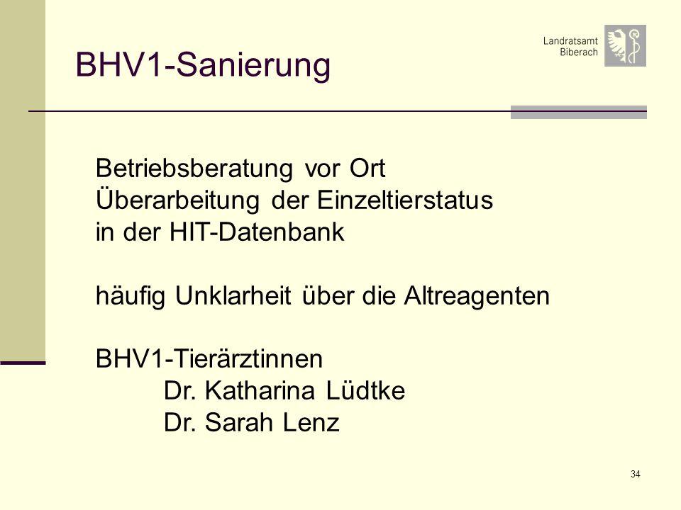 BHV1-Sanierung Betriebsberatung vor Ort