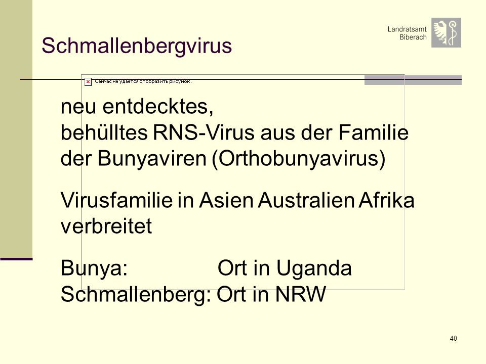 Schmallenbergvirus neu entdecktes, behülltes RNS-Virus aus der Familie der Bunyaviren (Orthobunyavirus)