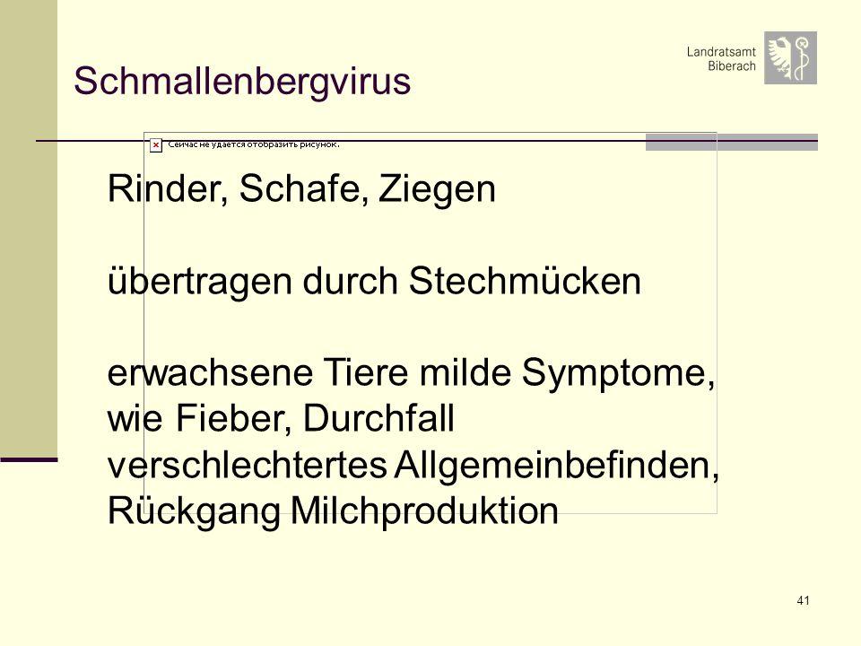 Schmallenbergvirus Rinder, Schafe, Ziegen. übertragen durch Stechmücken. erwachsene Tiere milde Symptome, wie Fieber, Durchfall.