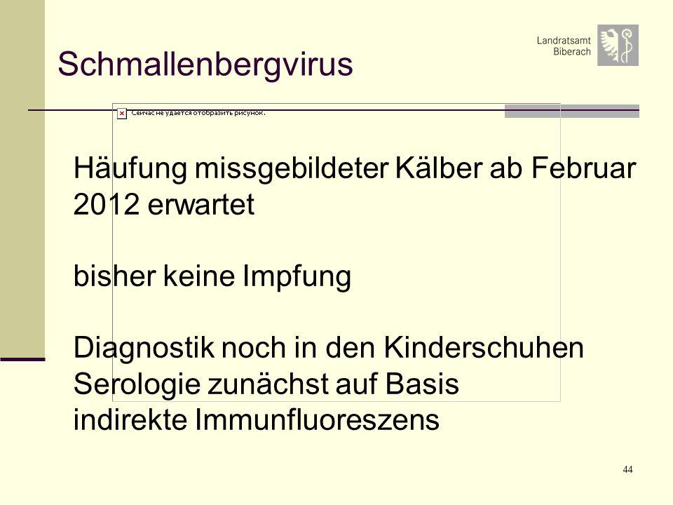 Schmallenbergvirus Häufung missgebildeter Kälber ab Februar 2012 erwartet. bisher keine Impfung. Diagnostik noch in den Kinderschuhen.