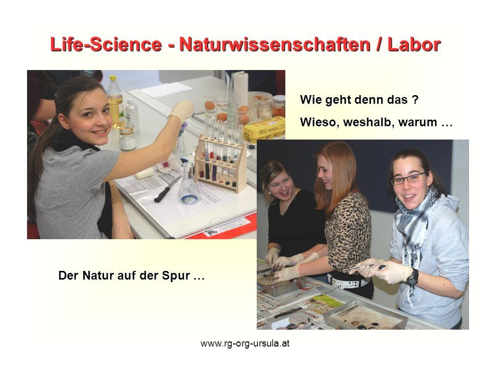 Life-Science - Naturwissenschaften / Labor