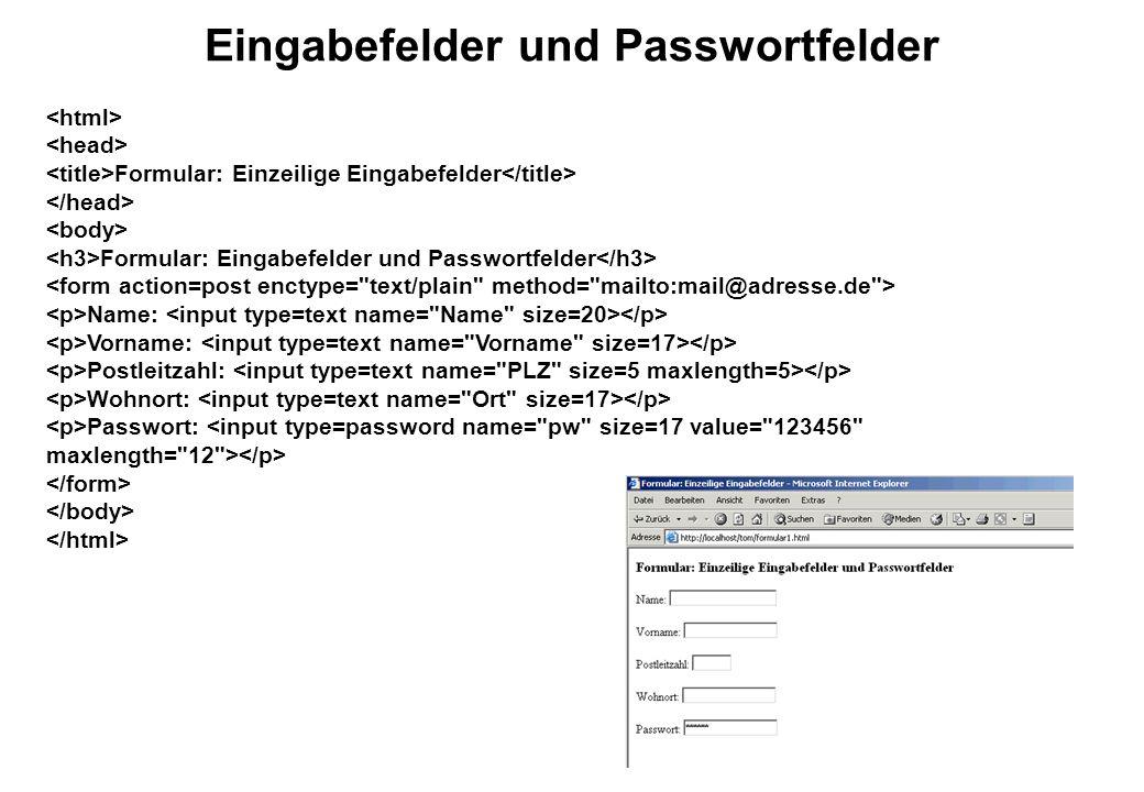 Eingabefelder und Passwortfelder