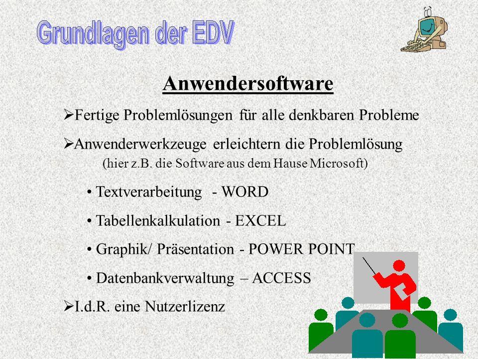 Anwendersoftware Fertige Problemlösungen für alle denkbaren Probleme