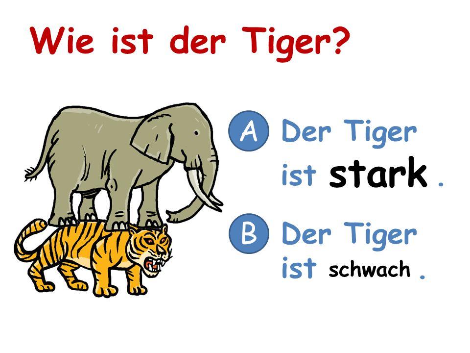 Wie ist der Tiger A Der Tiger ist . stark B Der Tiger ist . schwach