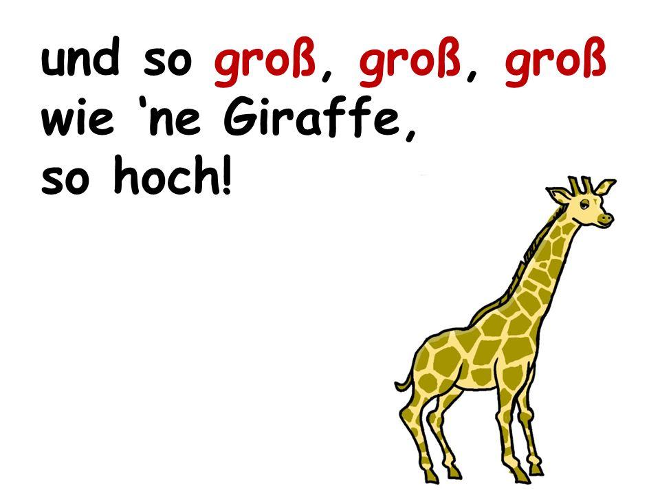 und so groß, groß, groß wie 'ne Giraffe,