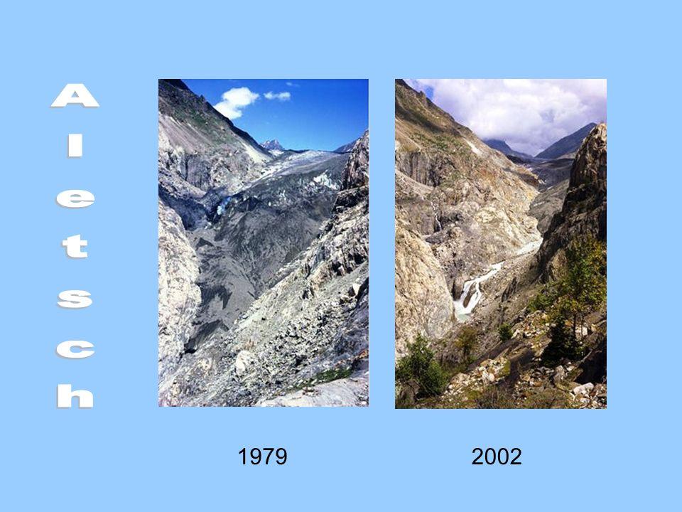 Aletsch 1979 2002