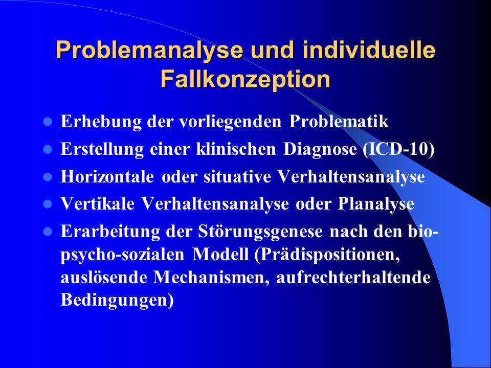 Problemanalyse und individuelle Fallkonzeption