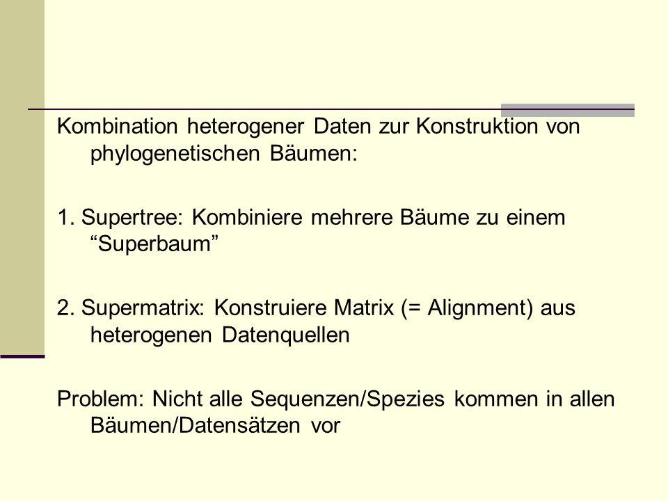 Kombination heterogener Daten zur Konstruktion von phylogenetischen Bäumen: 1.