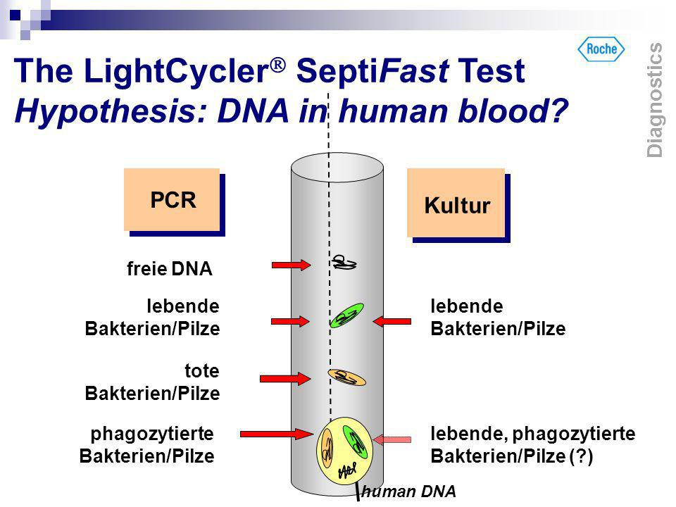 The LightCycler SeptiFast Test Hypothesis: DNA in human blood