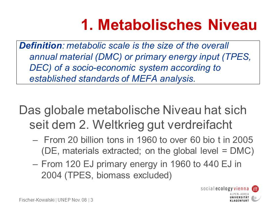 1. Metabolisches Niveau