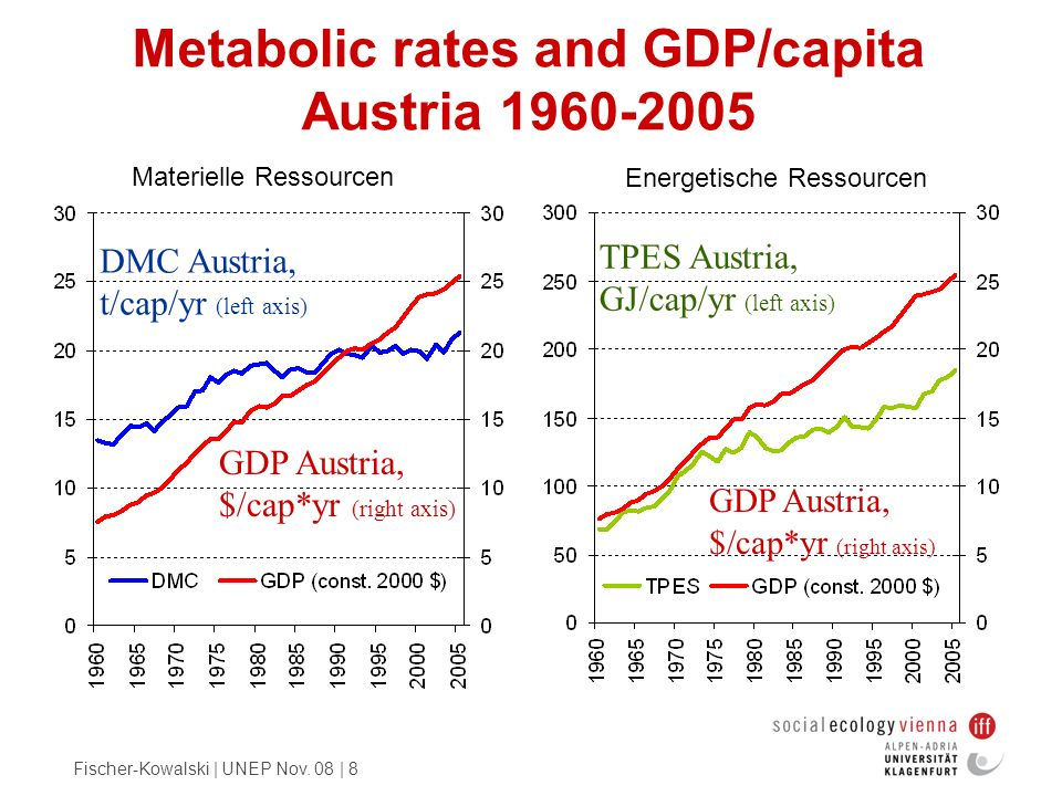 Metabolic rates and GDP/capita Austria 1960-2005