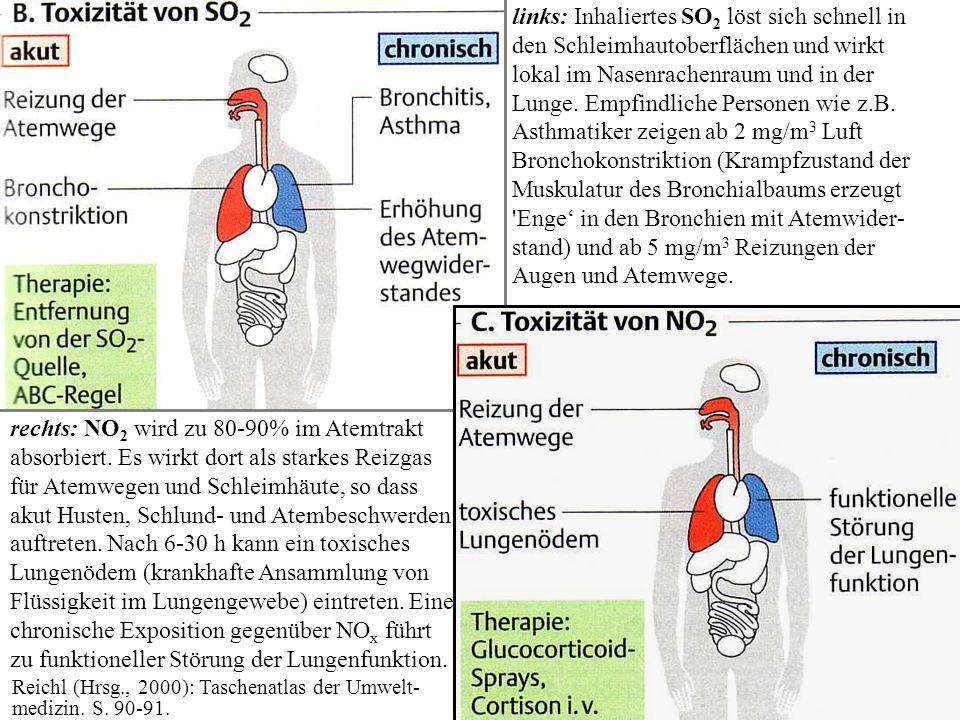 links: Inhaliertes SO2 löst sich schnell in den Schleimhautoberflächen und wirkt lokal im Nasenrachenraum und in der Lunge. Empfindliche Personen wie z.B. Asthmatiker zeigen ab 2 mg/m3 Luft Bronchokonstriktion (Krampfzustand der Muskulatur des Bronchialbaums erzeugt Enge' in den Bronchien mit Atemwider-stand) und ab 5 mg/m3 Reizungen der Augen und Atemwege.
