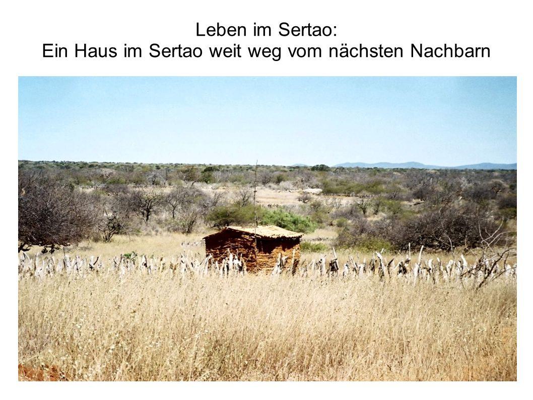 Leben im Sertao: Ein Haus im Sertao weit weg vom nächsten Nachbarn