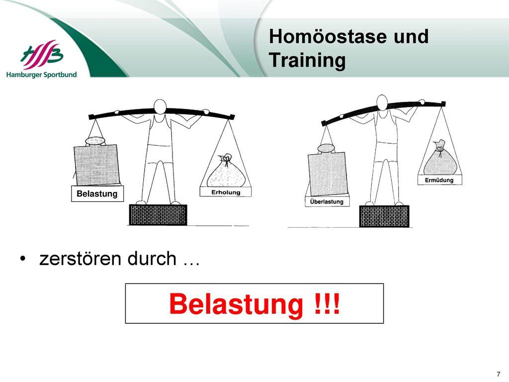 Berühmt Bild Der Homöostase Ideen - Physiologie Von Menschlichen ...
