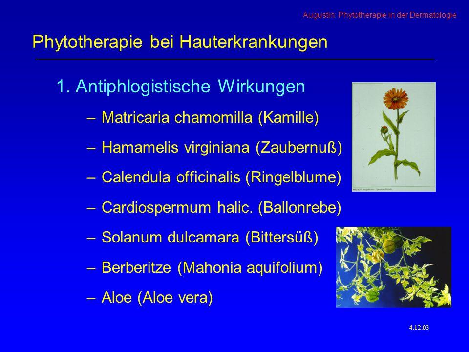 Phytotherapie bei Hauterkrankungen