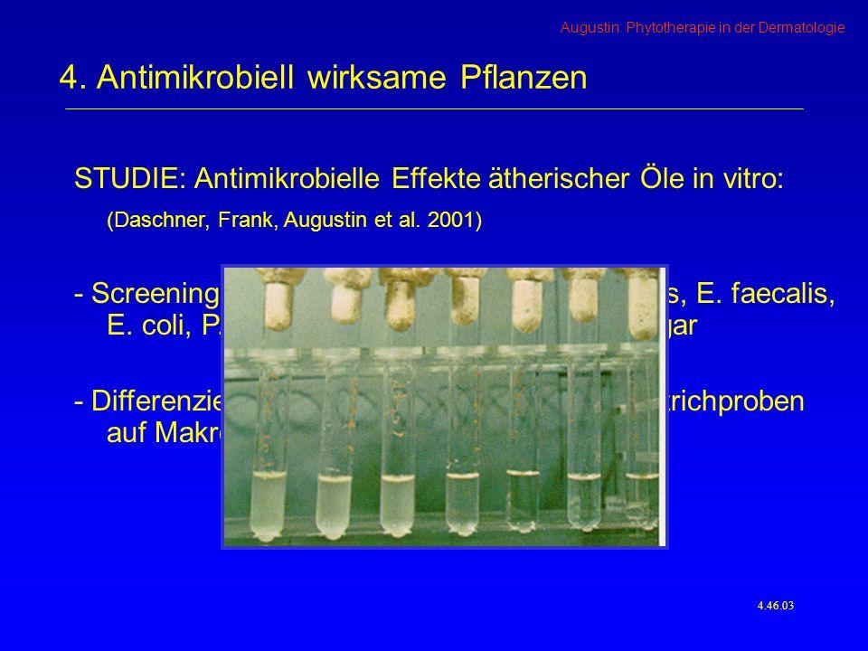 4. Antimikrobiell wirksame Pflanzen