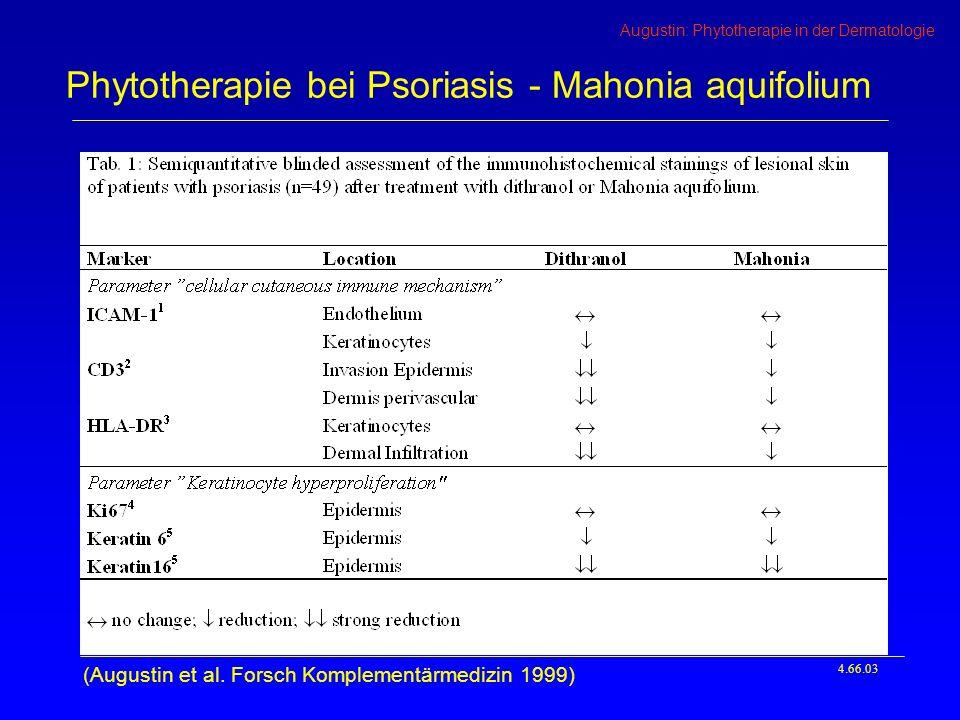 Phytotherapie bei Psoriasis - Mahonia aquifolium