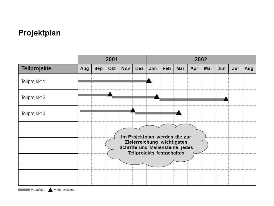 Projektplan 2001 2002 Teilprojekte