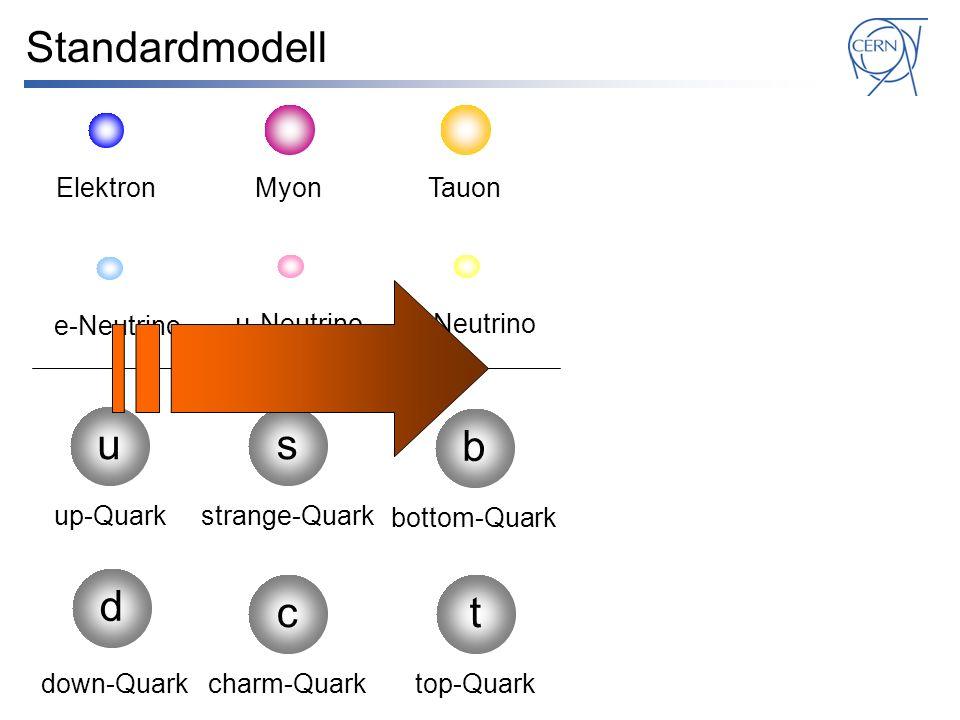 Standardmodell u s b d c t Elektron Myon Tauon e-Neutrino μ-Neutrino