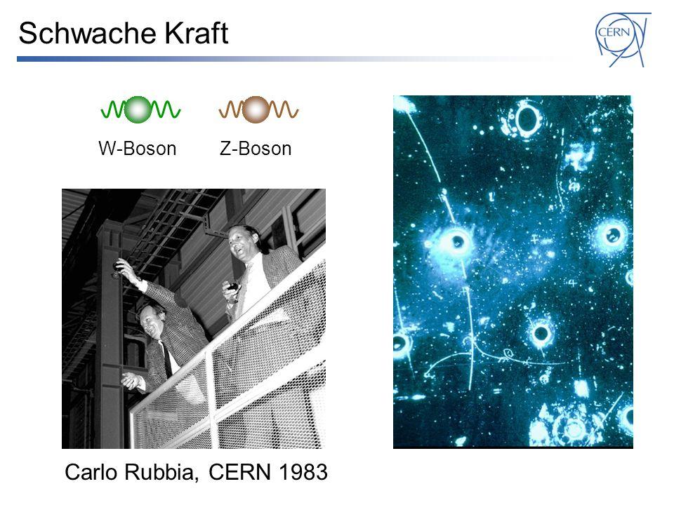 Schwache Kraft W-Boson Z-Boson Carlo Rubbia, CERN 1983