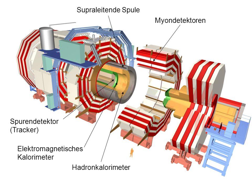 Supraleitende Spule Myondetektoren. Spurendetektor (Tracker) Elektromagnetisches Kalorimeter.