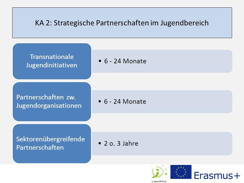 KA 2: Strategische Partnerschaften im Jugendbereich