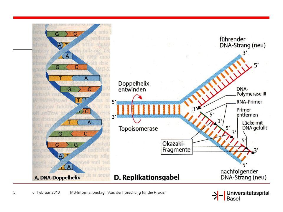 6. Februar 2010 MS-Informationstag: Aus der Forschung für die Praxis