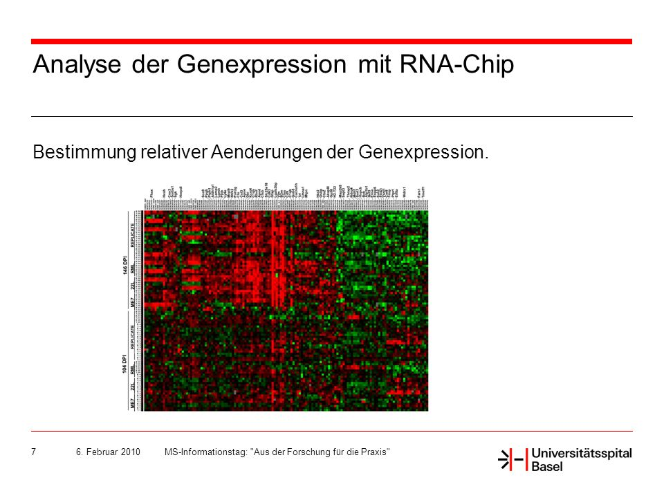 Analyse der Genexpression mit RNA-Chip