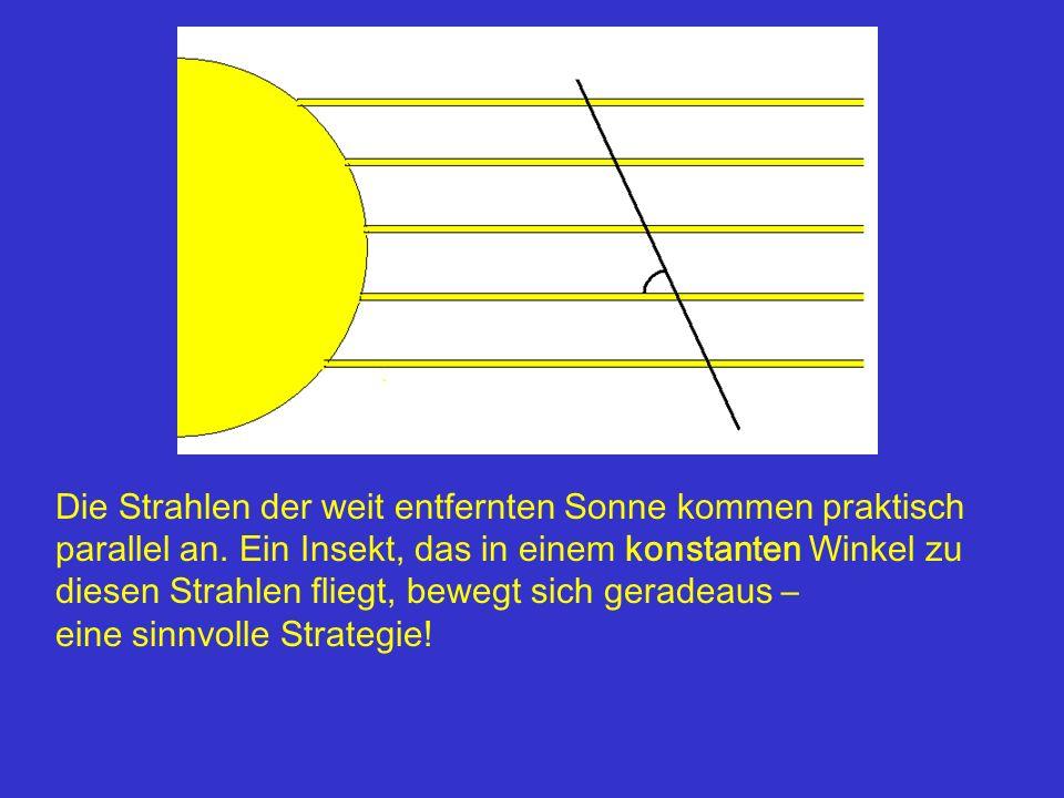 Die Strahlen der weit entfernten Sonne kommen praktisch parallel an