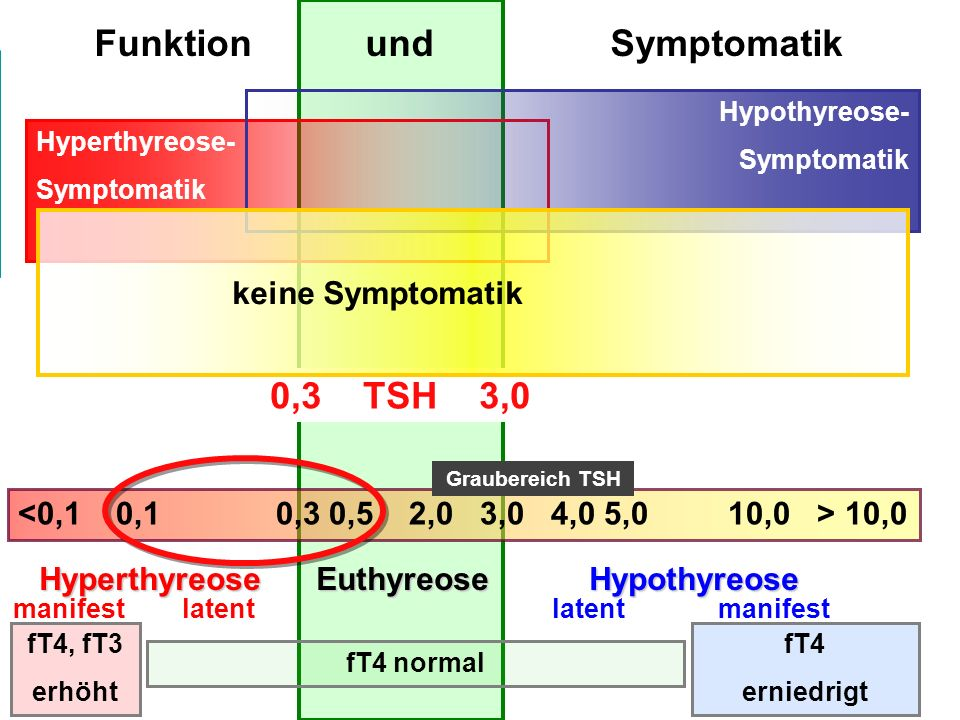Funktion und Symptomatik