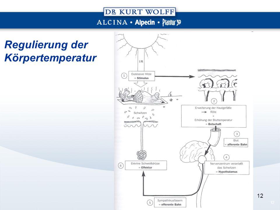 Regulierung der Körpertemperatur