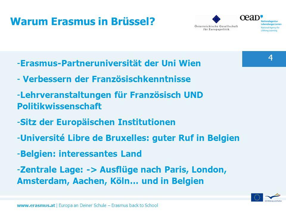 Warum Erasmus in Brüssel