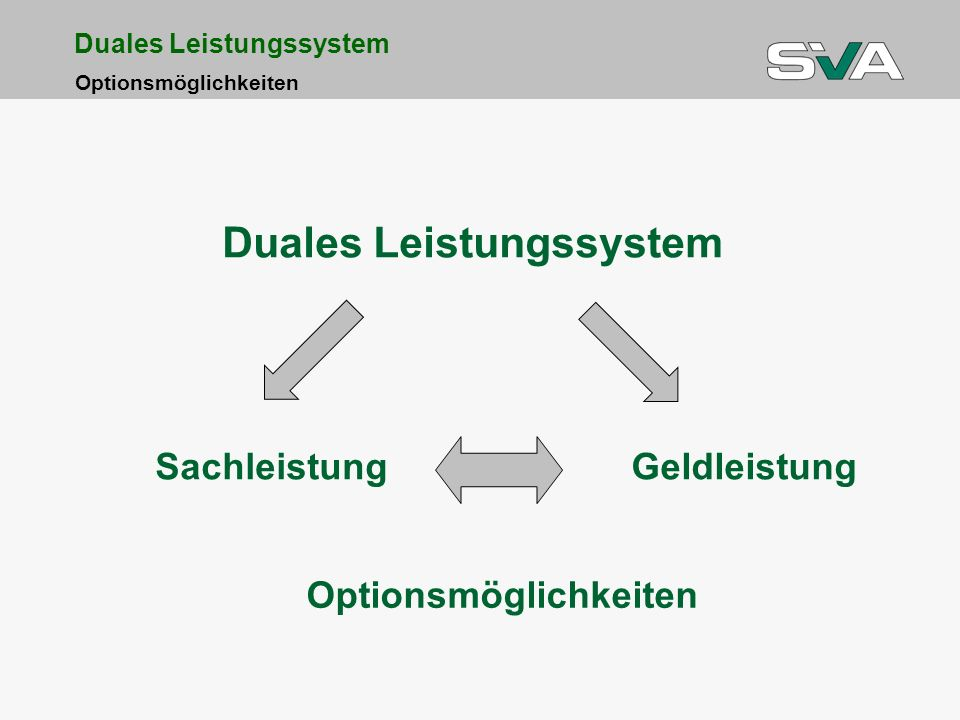 Duales Leistungssystem Optionsmöglichkeiten