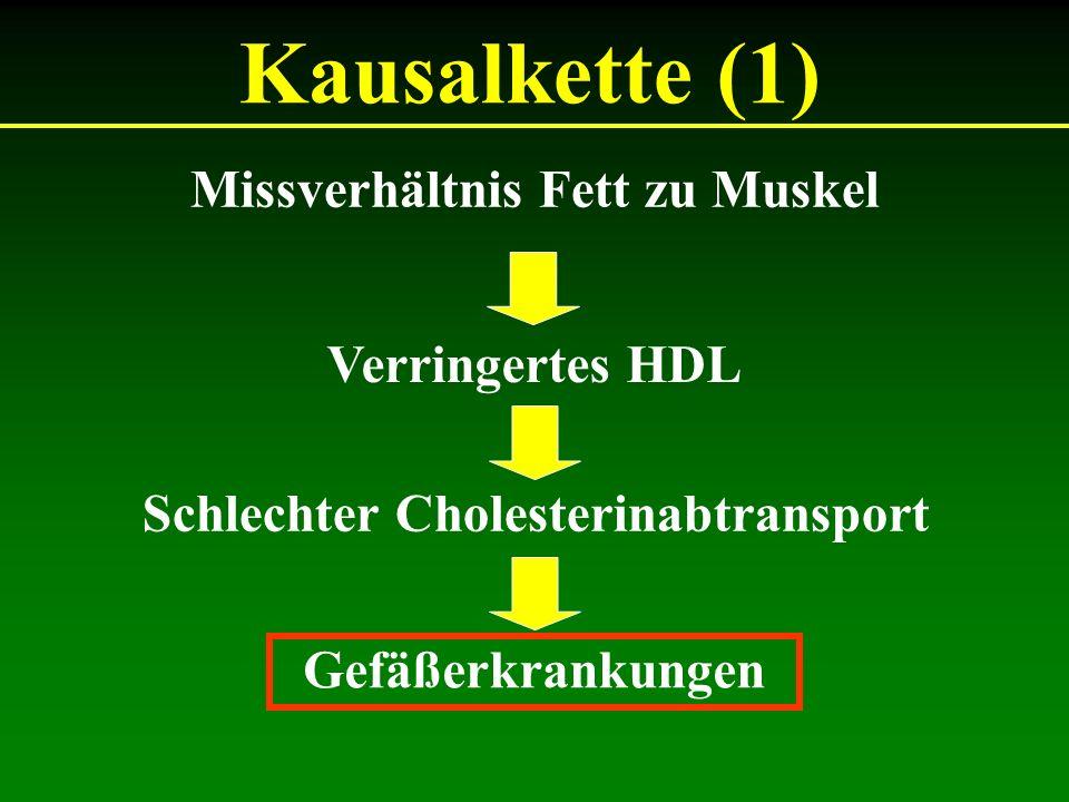 Missverhältnis Fett zu Muskel Schlechter Cholesterinabtransport