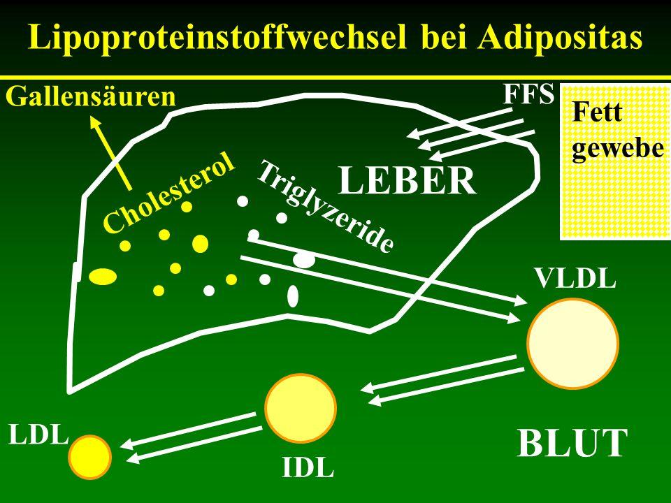 Lipoproteinstoffwechsel bei Adipositas