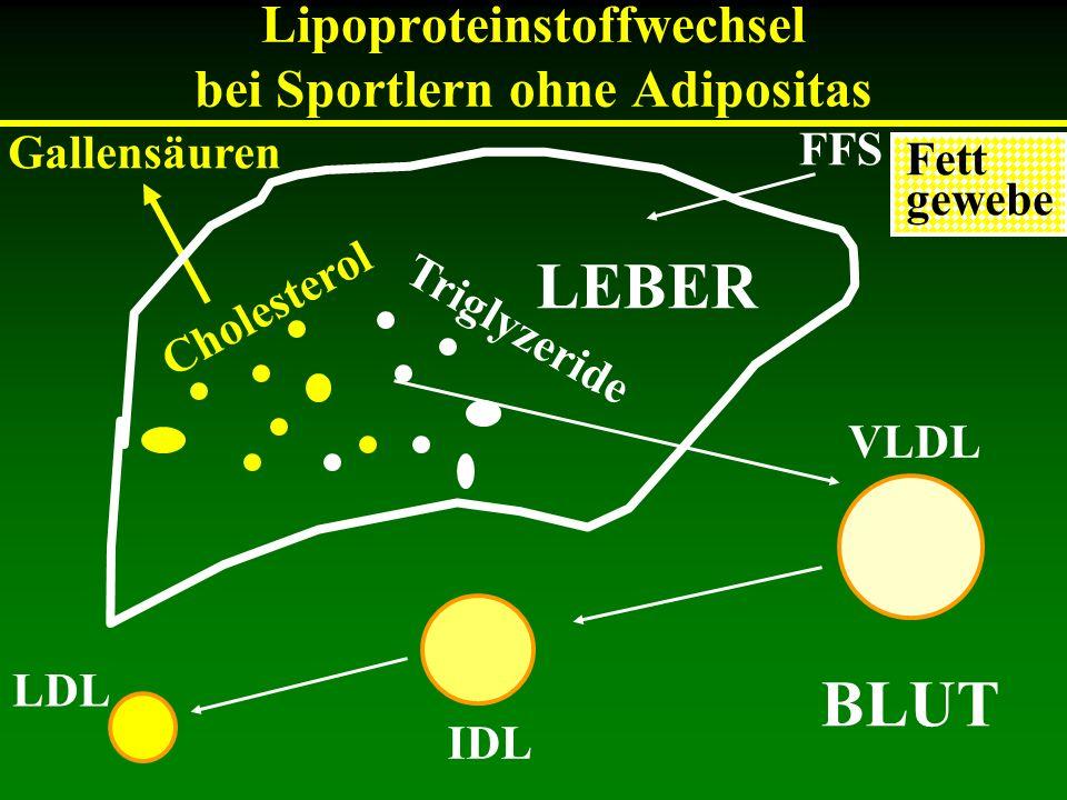 Lipoproteinstoffwechsel bei Sportlern ohne Adipositas